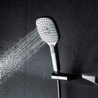 Hansa Active Jet Style Shower Head 3 Function