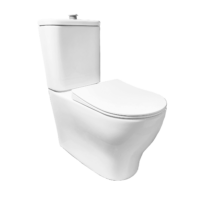 Disabled Compliant Toilet with raised flush buttons